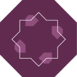 S-IM Interconnect Solution